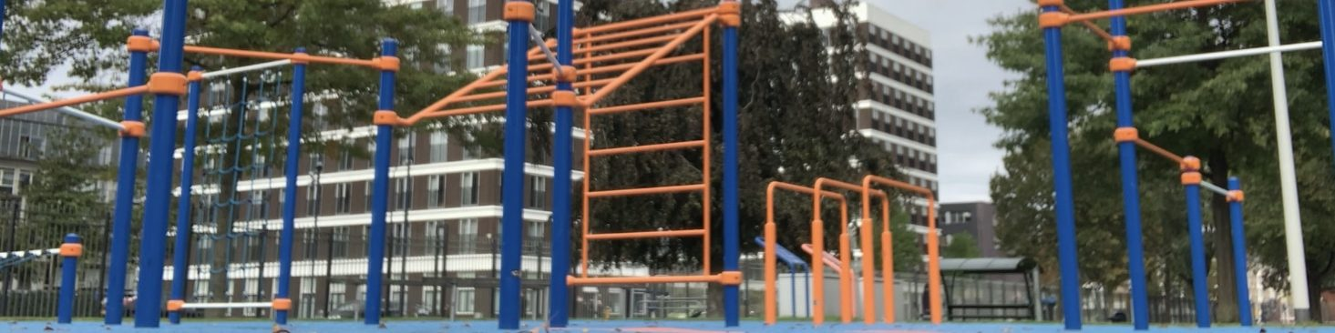 Street workout park - CalisthenicsWorld.nl